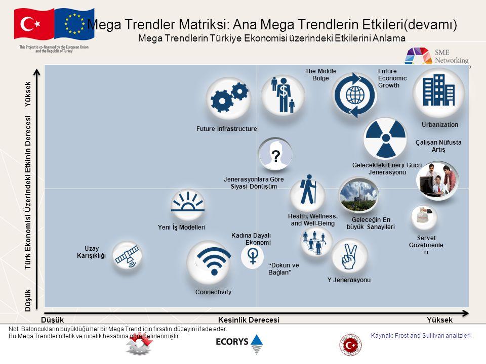 Mega Trendler Matriksi: Ana Mega Trendlerin Etkileri(devamı) Mega Trendlerin Türkiye Ekonomisi üzerindeki Etkilerini Anlama