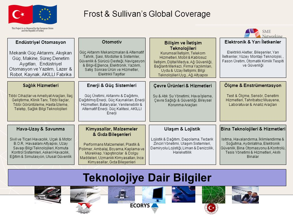 Frost & Sullivan's Global Coverage