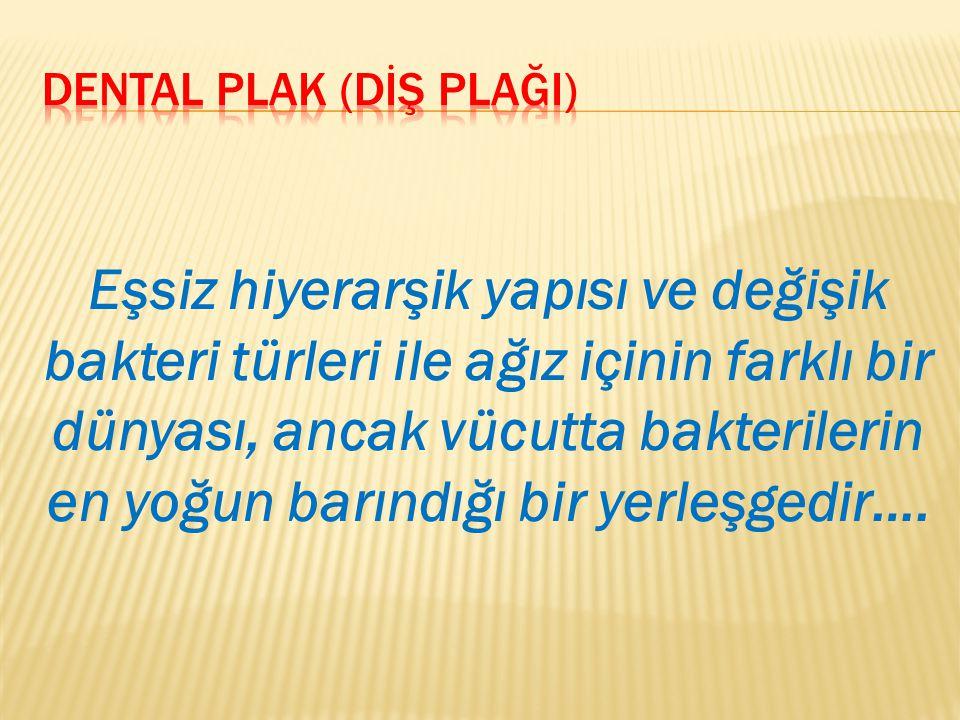 DENTAL PLAK (DİŞ PLAĞI)