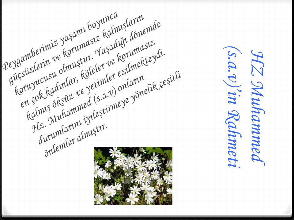 HZ Muhammed (s.a.v)'in Rahmeti