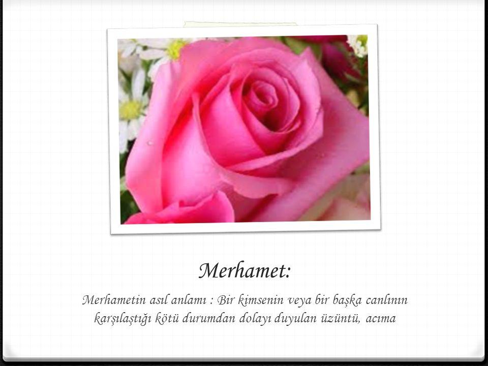 Merhamet: Merhametin asıl anlamı : Bir kimsenin veya bir başka canlının karşılaştığı kötü durumdan dolayı duyulan üzüntü, acıma.