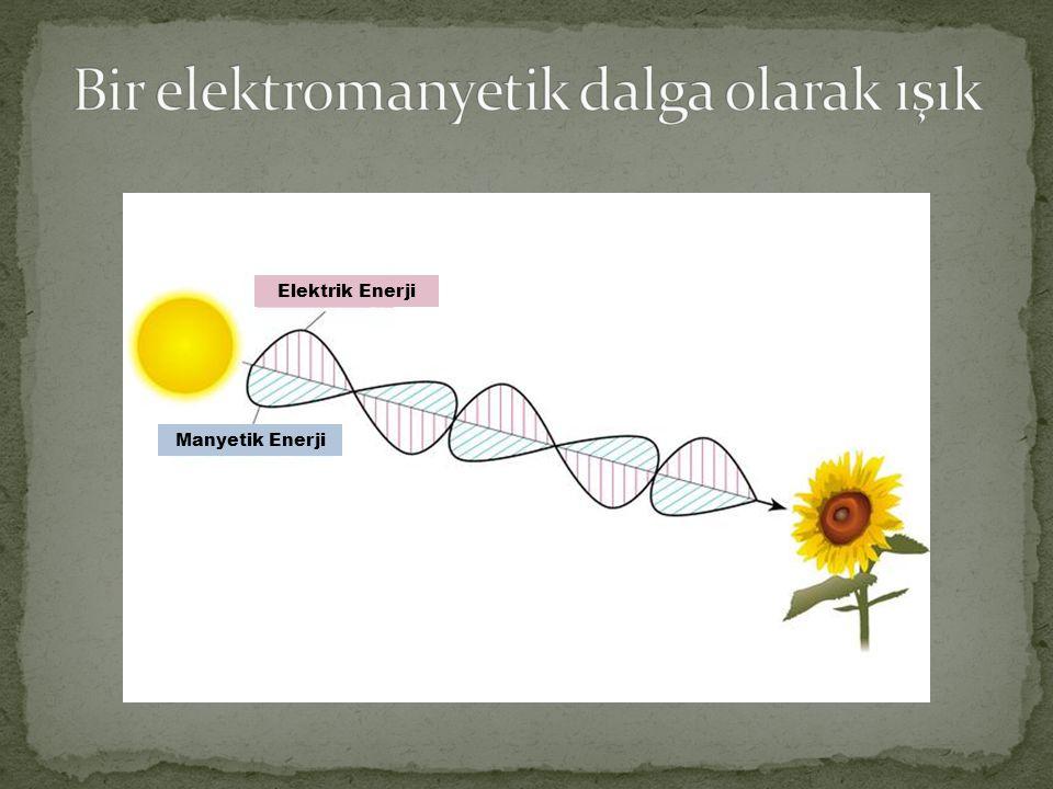 Bir elektromanyetik dalga olarak ışık