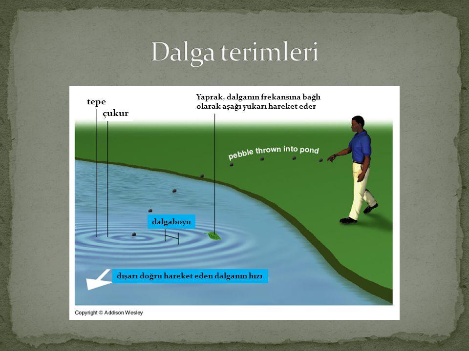 Dalga terimleri tepe çukur Yaprak, dalganın frekansına bağlı