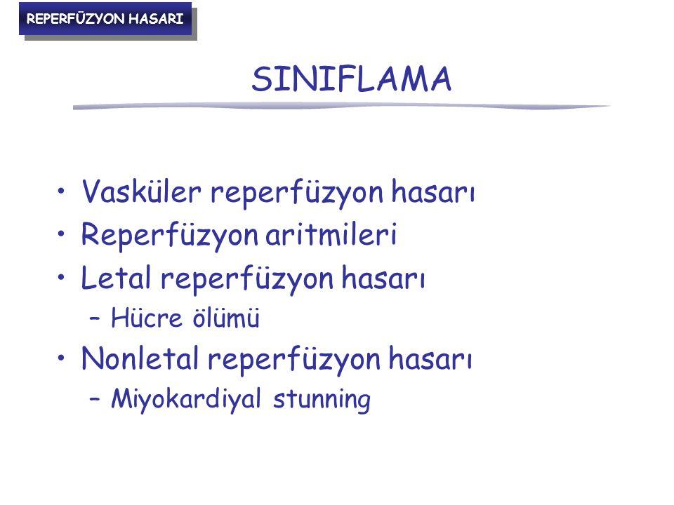 SINIFLAMA Vasküler reperfüzyon hasarı Reperfüzyon aritmileri