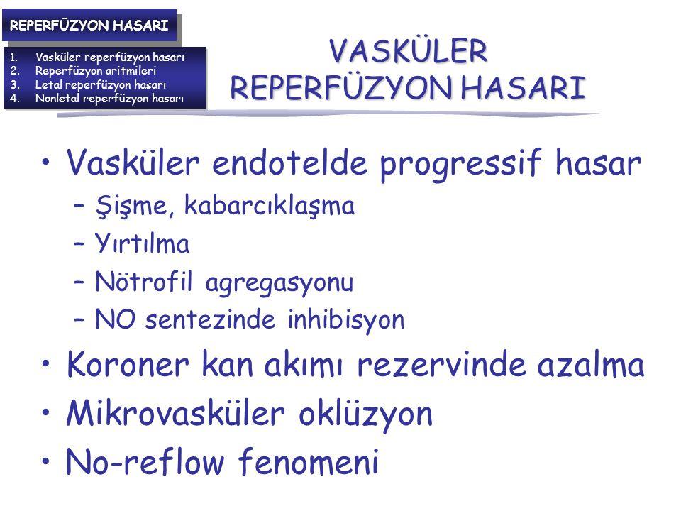 VASKÜLER REPERFÜZYON HASARI
