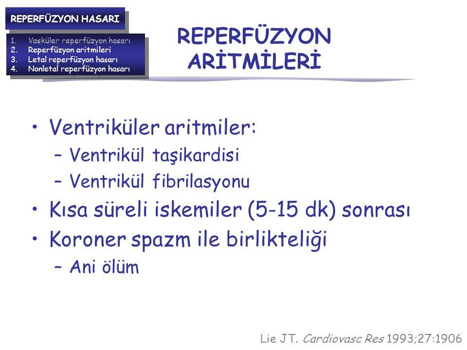 REPERFÜZYON ARİTMİLERİ