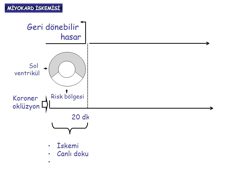 Nekrozun yayılması (midmiyokard, subepikard)