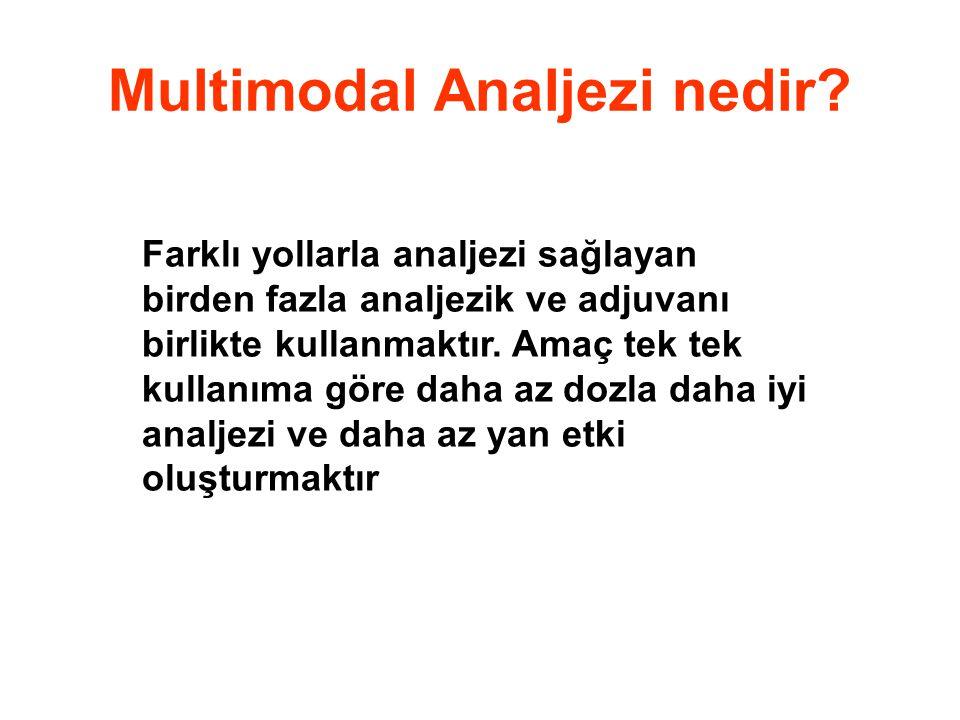 Multimodal Analjezi nedir