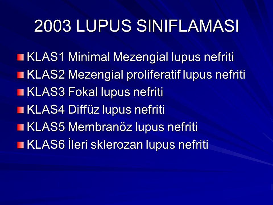 2003 LUPUS SINIFLAMASI KLAS1 Minimal Mezengial lupus nefriti