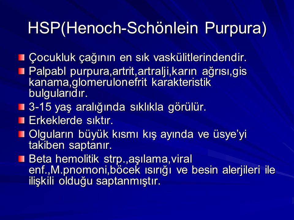 HSP(Henoch-Schönlein Purpura)