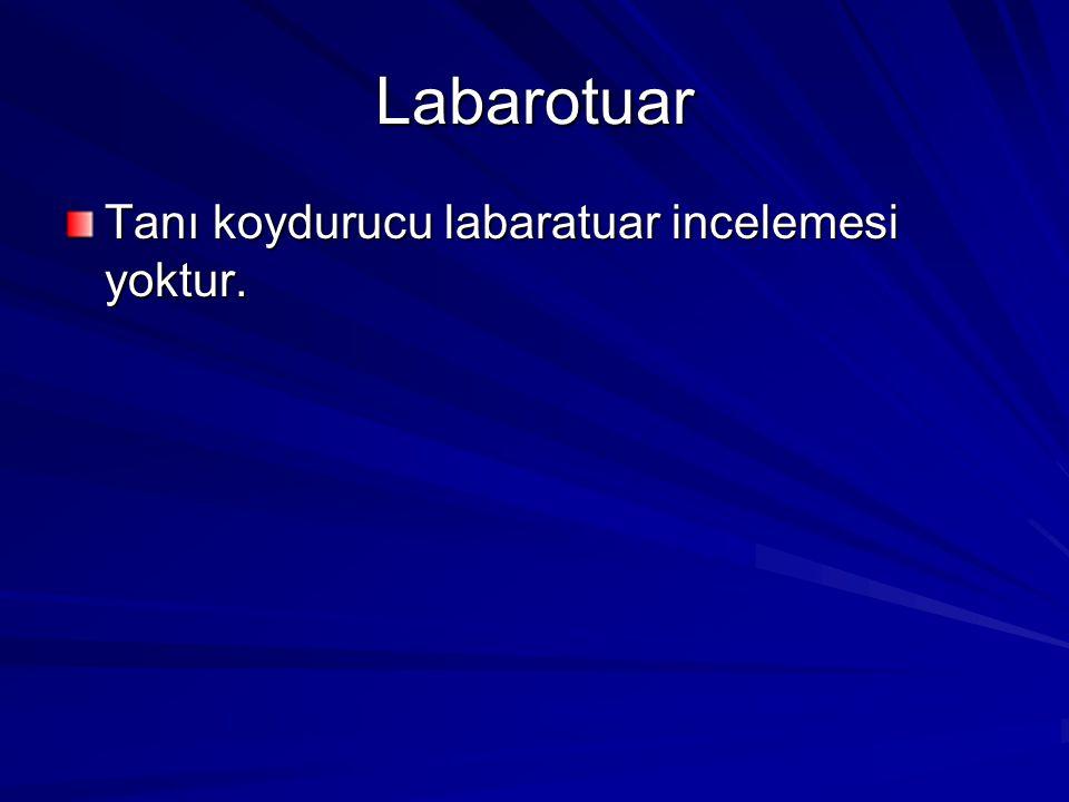 Labarotuar Tanı koydurucu labaratuar incelemesi yoktur.