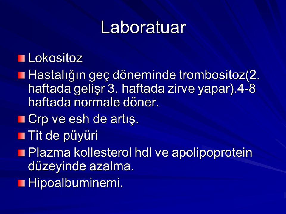 Laboratuar Lokositoz. Hastalığın geç döneminde trombositoz(2. haftada gelişr 3. haftada zirve yapar).4-8 haftada normale döner.