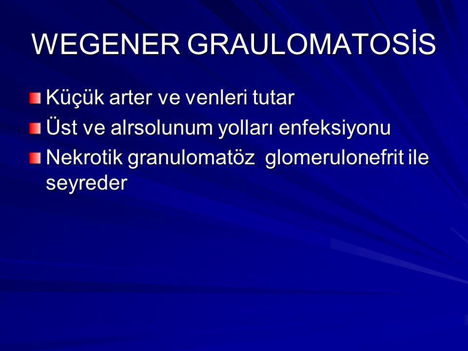 WEGENER GRAULOMATOSİS