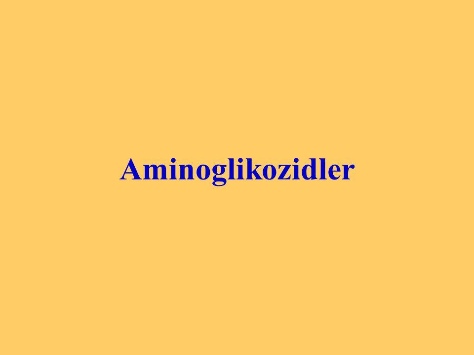 Aminoglikozidler