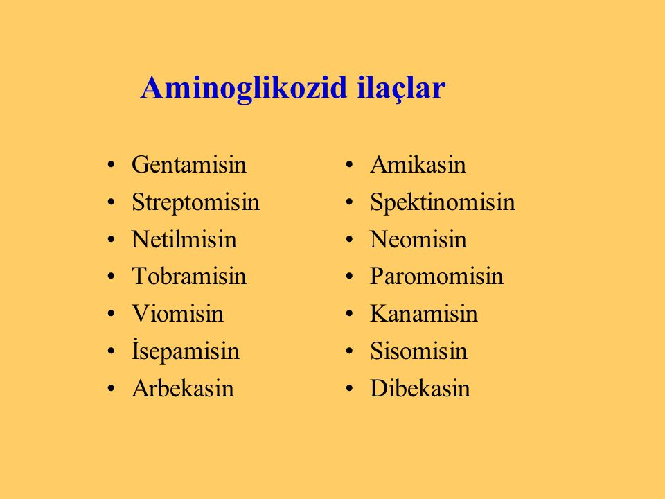 Aminoglikozid ilaçlar
