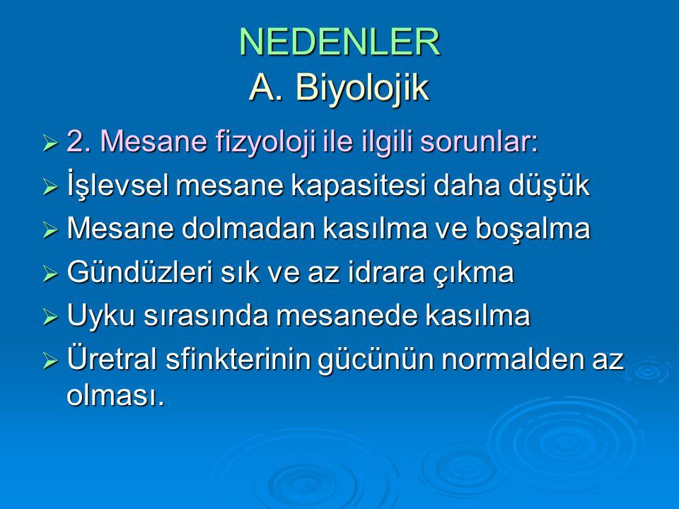NEDENLER A. Biyolojik 2. Mesane fizyoloji ile ilgili sorunlar: