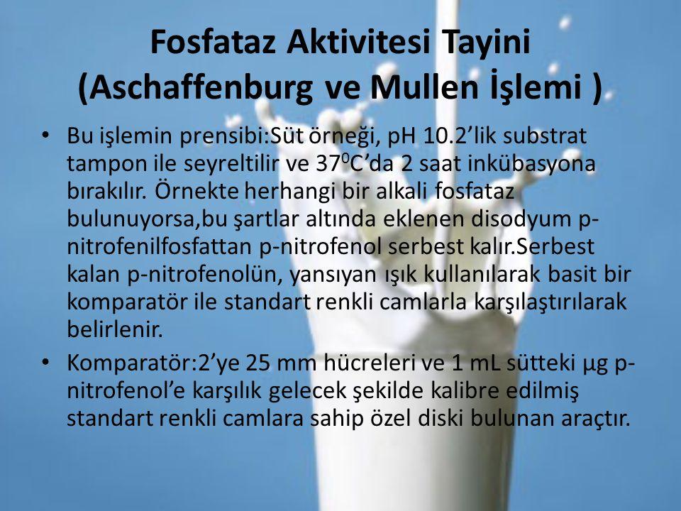 Fosfataz Aktivitesi Tayini (Aschaffenburg ve Mullen İşlemi )