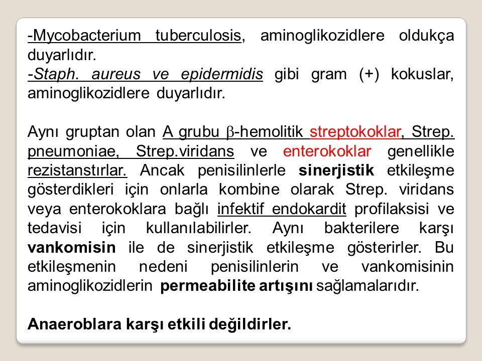 -Mycobacterium tuberculosis, aminoglikozidlere oldukça duyarlıdır.