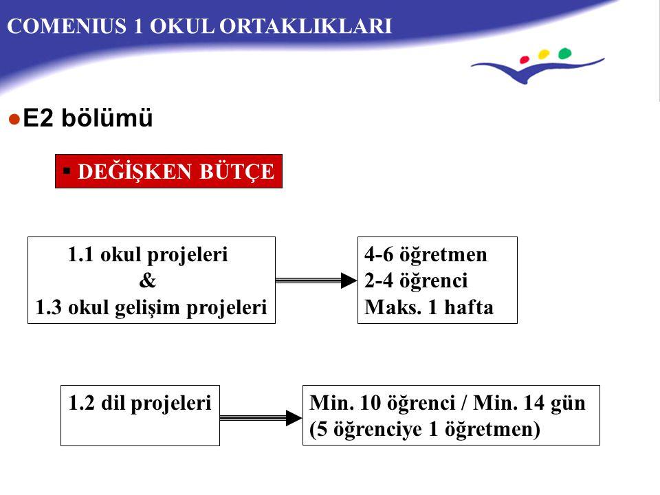 1.3 okul gelişim projeleri