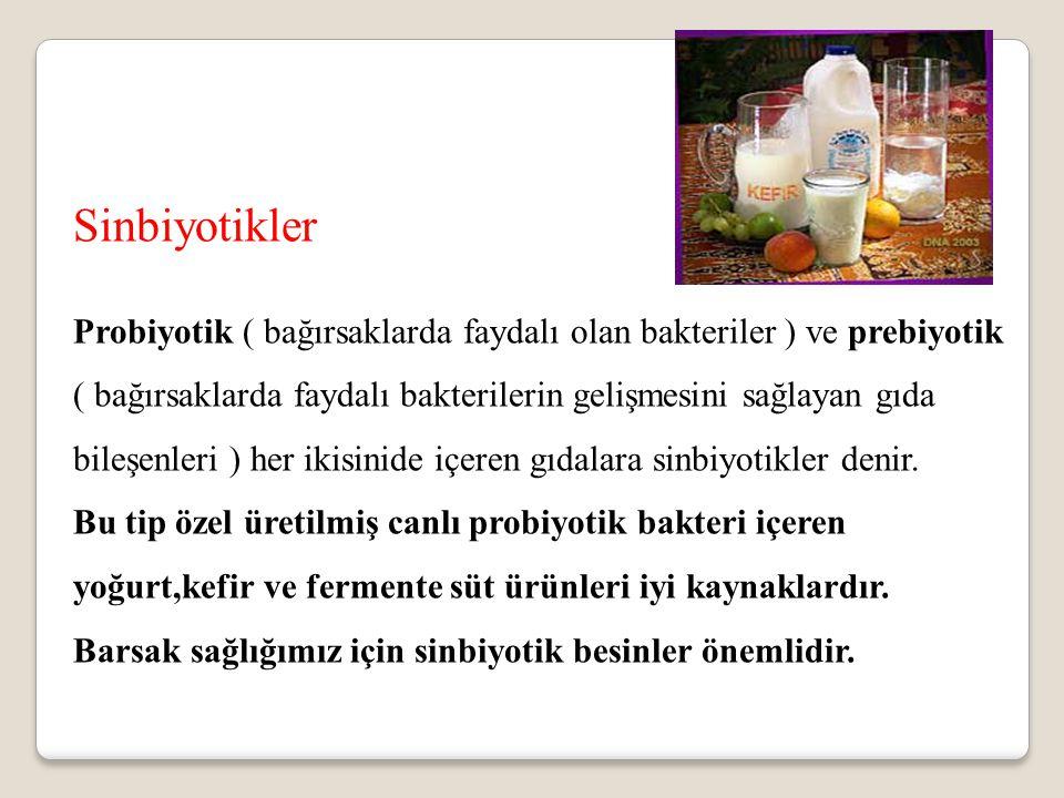 Sinbiyotikler