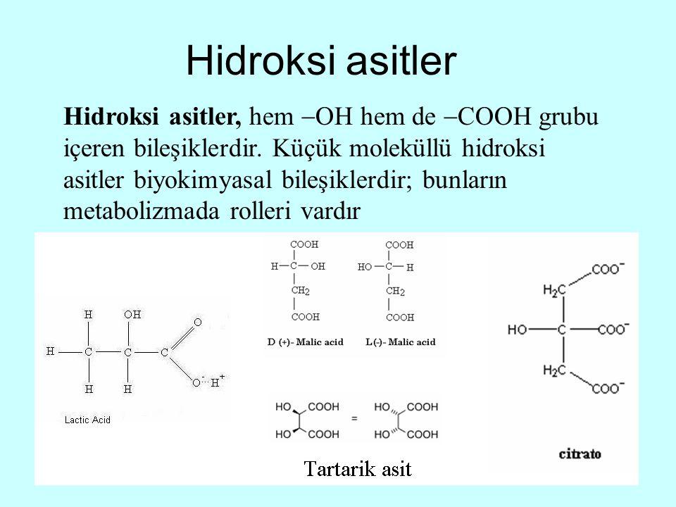 Hidroksi asitler