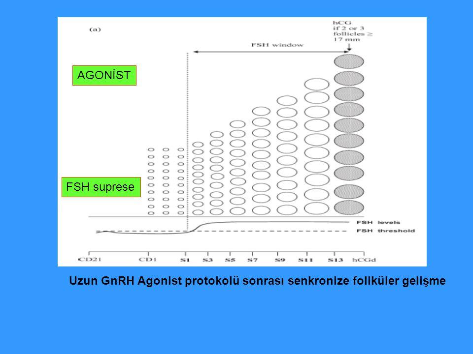 AGONİST FSH suprese Uzun GnRH Agonist protokolü sonrası senkronize foliküler gelişme