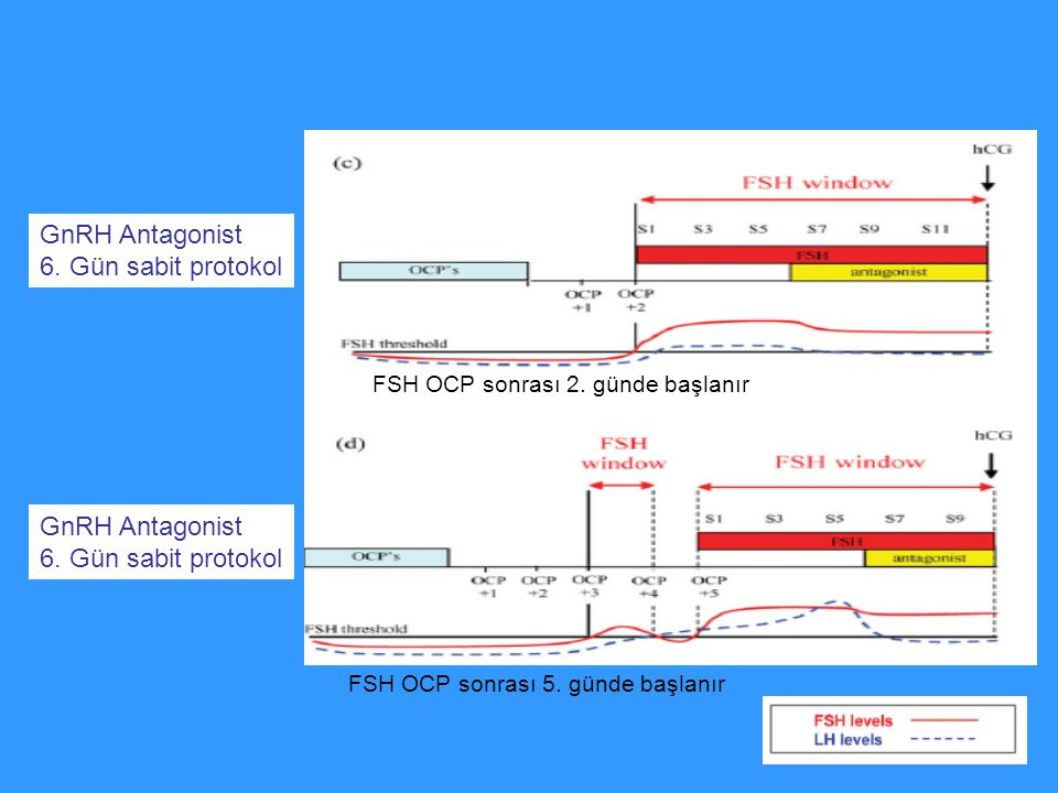 GnRH Antagonist 6. Gün sabit protokol GnRH Antagonist