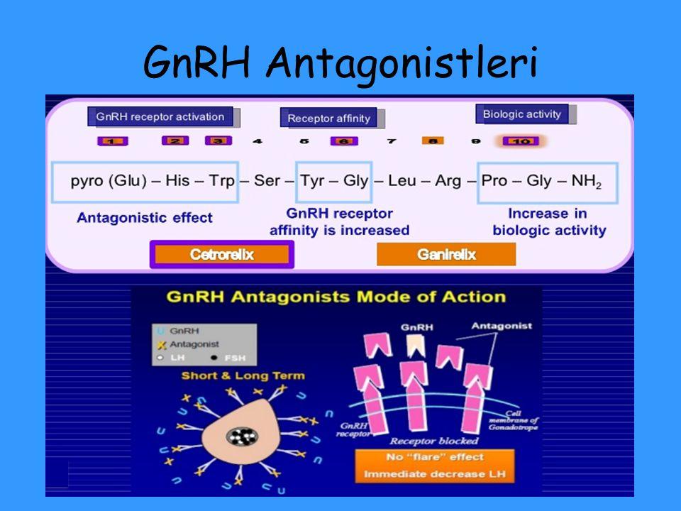 GnRH Antagonistleri