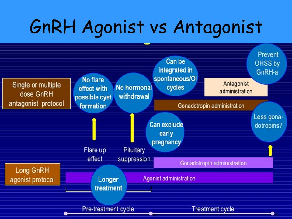 GnRH Agonist vs Antagonist
