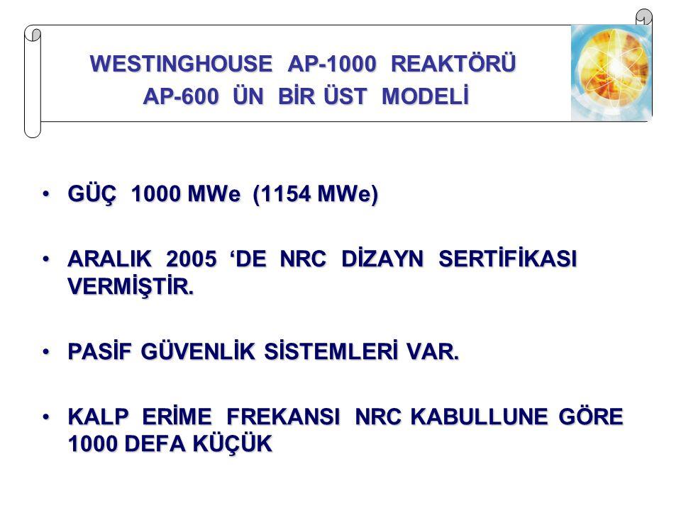 WESTINGHOUSE AP-1000 REAKTÖRÜ
