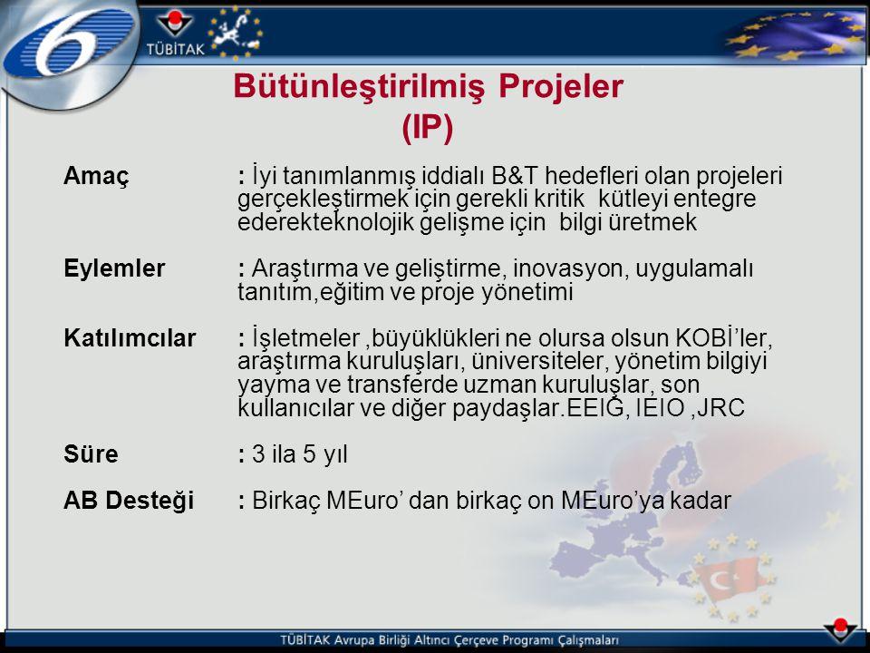Bütünleştirilmiş Projeler (IP)