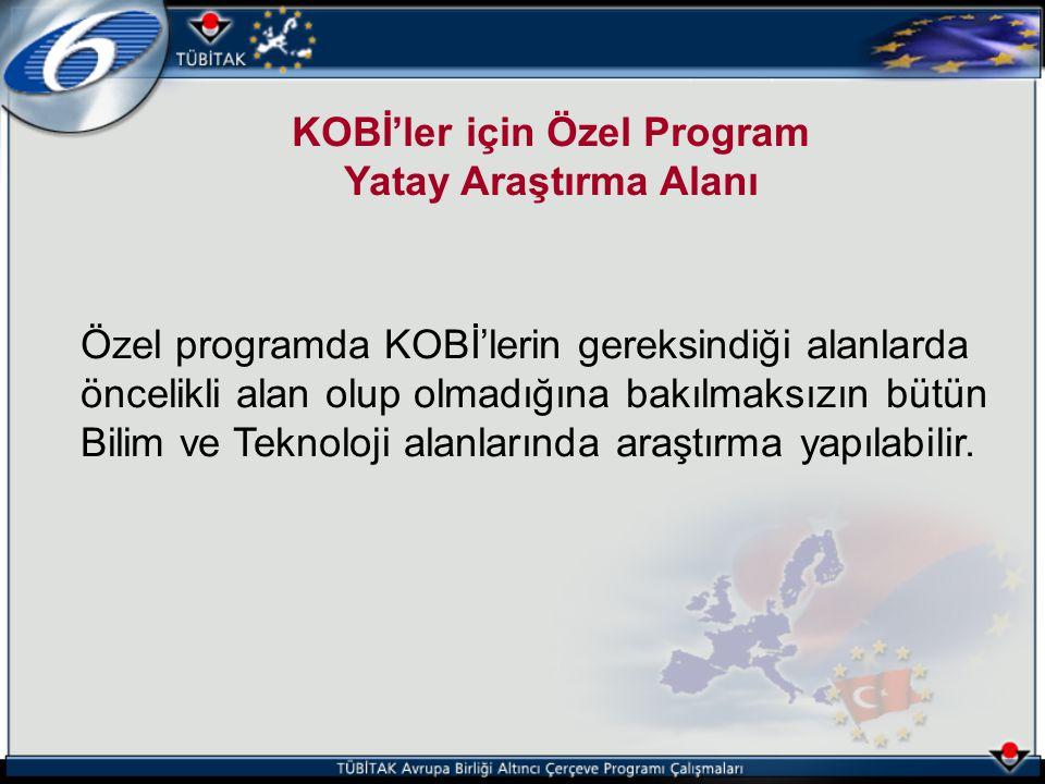 KOBİ'ler için Özel Program Yatay Araştırma Alanı