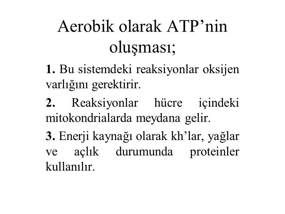 Aerobik olarak ATP'nin oluşması;