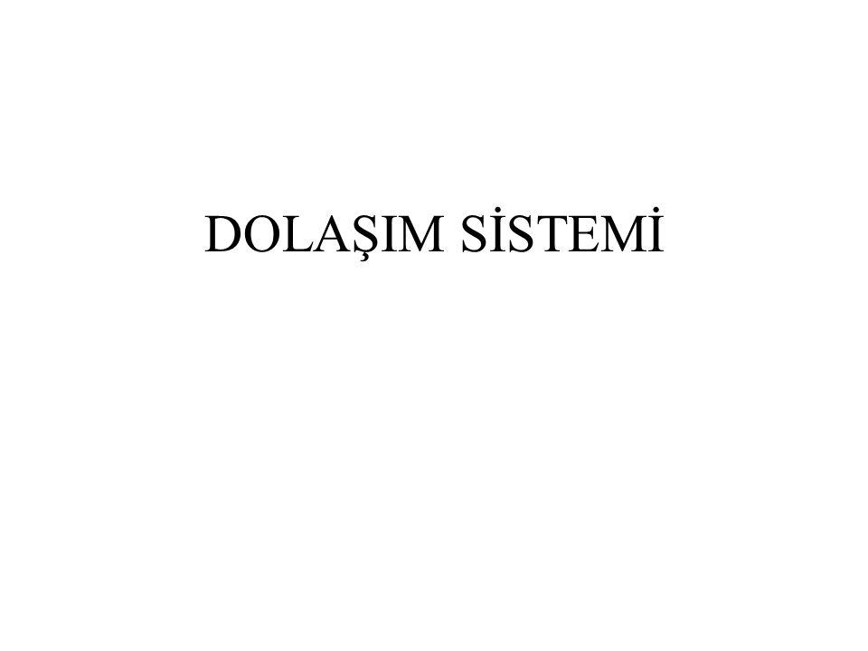 DOLAŞIM SİSTEMİ