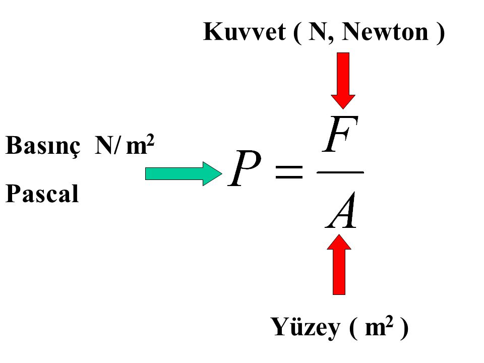 Kuvvet ( N, Newton ) Basınç N/ m2 Pascal Yüzey ( m2 )
