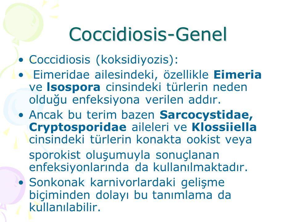 Coccidiosis-Genel Coccidiosis (koksidiyozis):