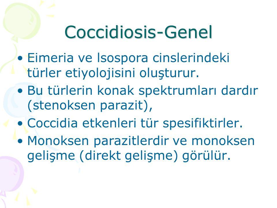 Coccidiosis-Genel Eimeria ve lsospora cinslerindeki türler etiyolojisini oluşturur. Bu türlerin konak spektrumları dardır (stenoksen parazit),