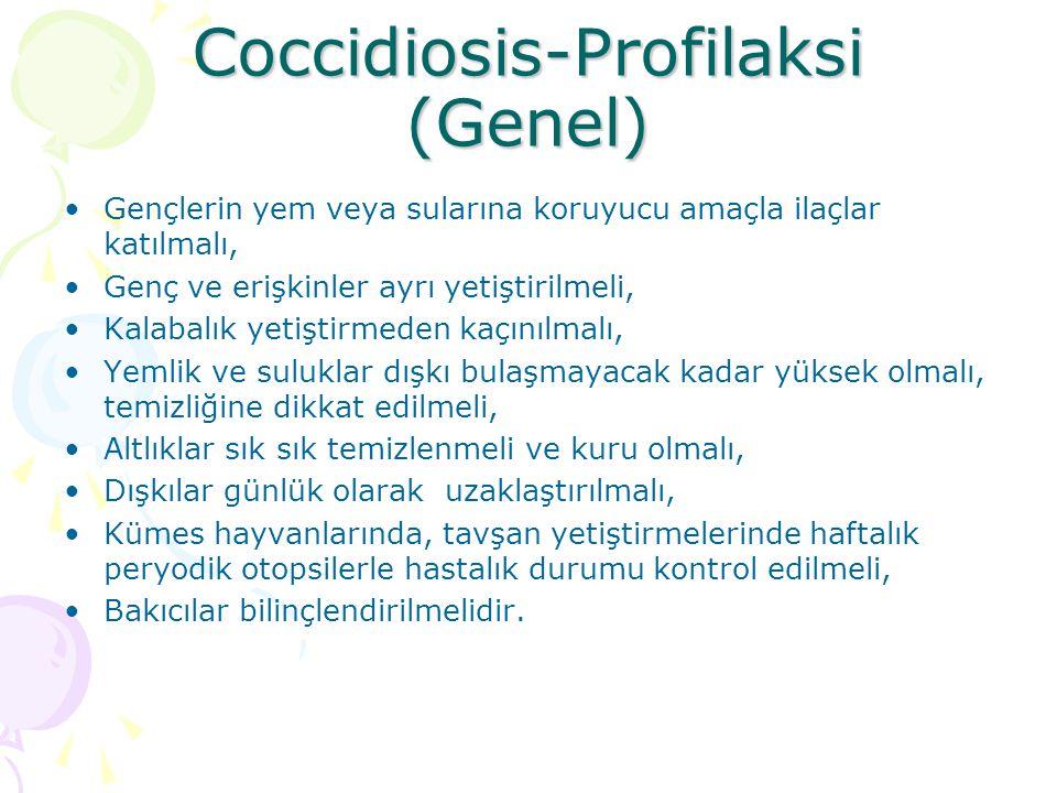 Coccidiosis-Profilaksi (Genel)