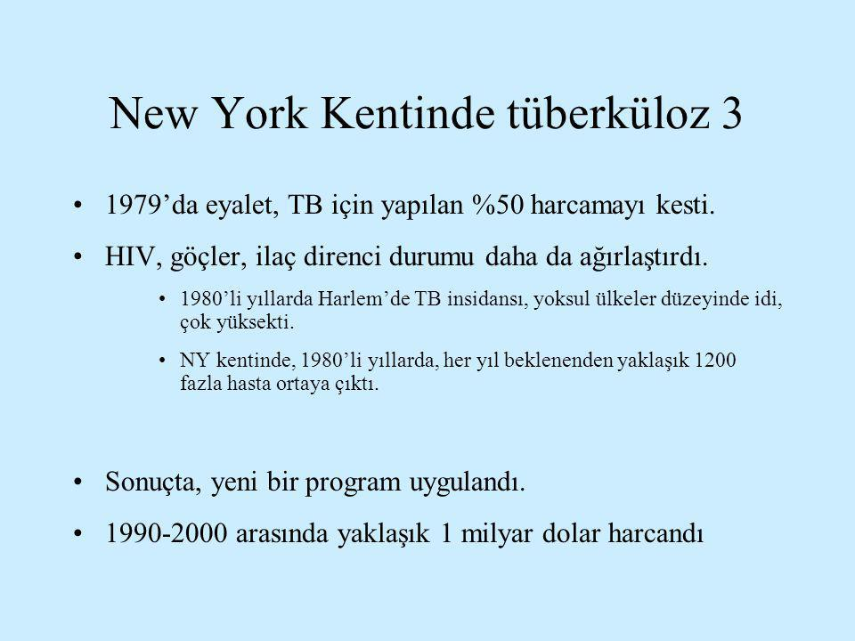 New York Kentinde tüberküloz 3