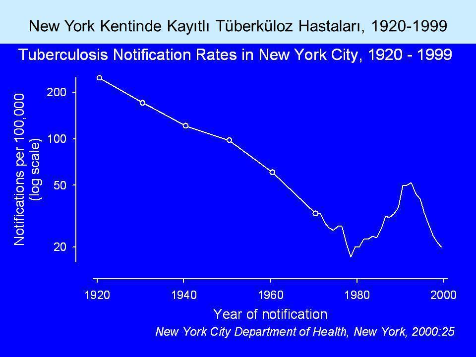 New York Kentinde Kayıtlı Tüberküloz Hastaları, 1920-1999