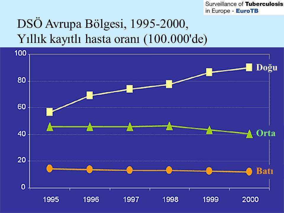 Yıllık kayıtlı hasta oranı (100.000 de)