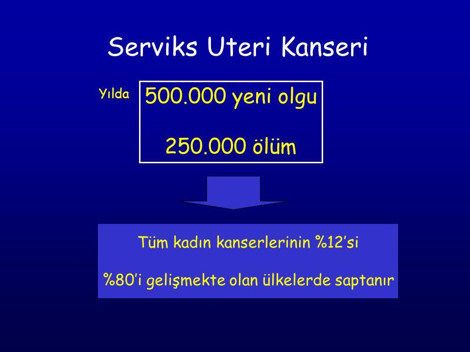 Serviks Uteri Kanseri 500.000 yeni olgu 250.000 ölüm