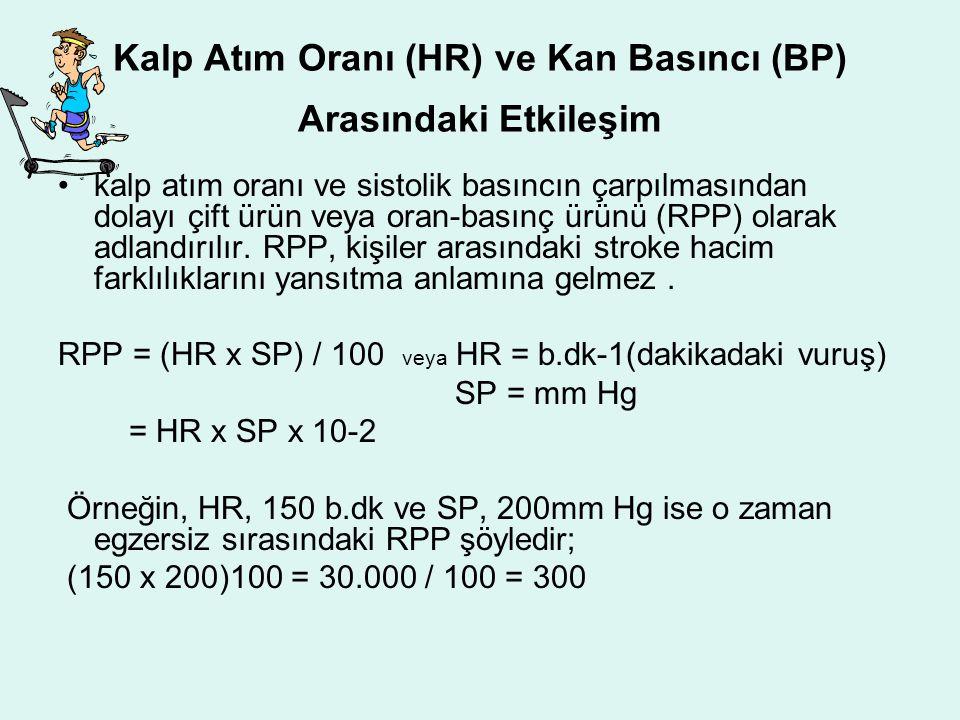 Kalp Atım Oranı (HR) ve Kan Basıncı (BP) Arasındaki Etkileşim