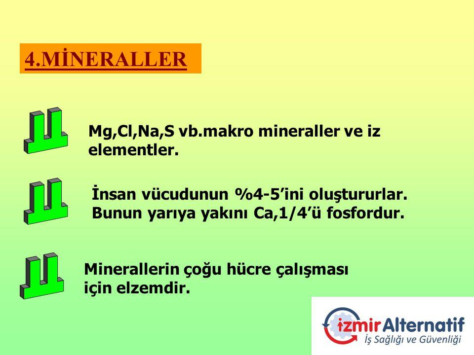 4.MİNERALLER Mg,Cl,Na,S vb.makro mineraller ve iz elementler.