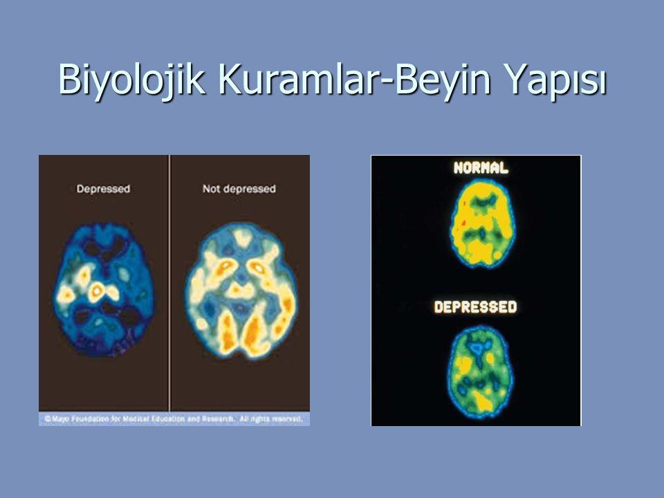 Biyolojik Kuramlar-Beyin Yapısı