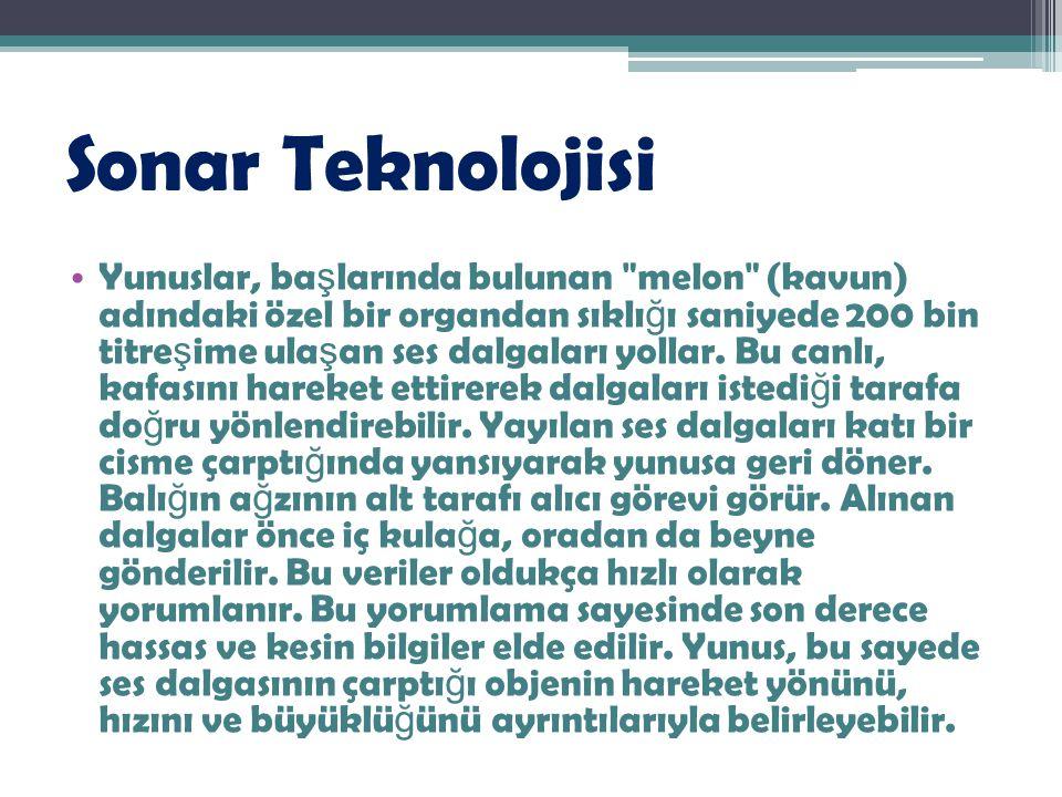 Sonar Teknolojisi