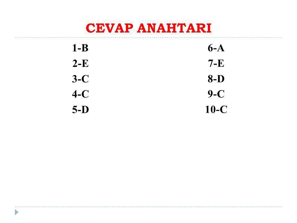 CEVAP ANAHTARI 1-B 2-E 3-C 4-C 5-D 6-A 7-E 8-D 9-C 10-C