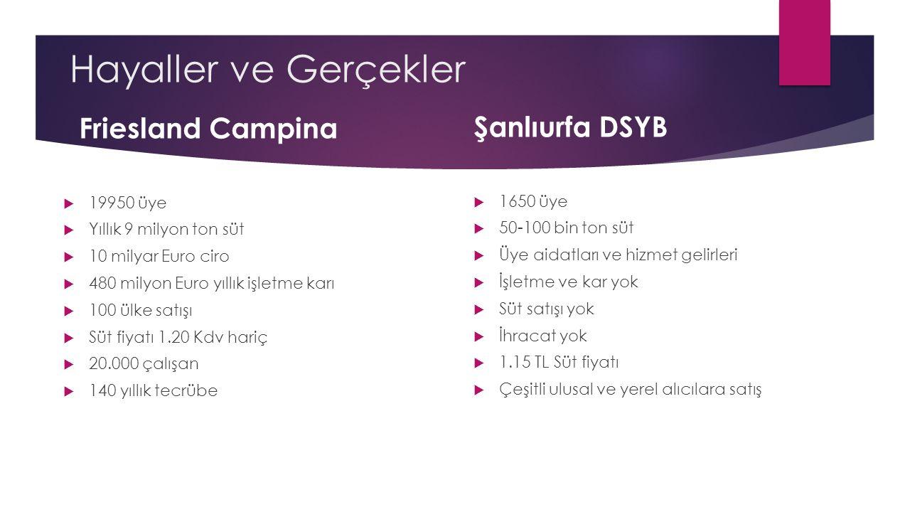 Hayaller ve Gerçekler Friesland Campina Şanlıurfa DSYB 19950 üye