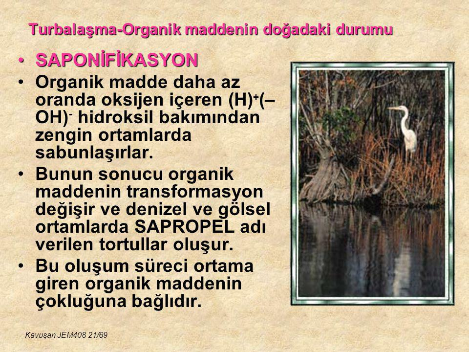 Turbalaşma-Organik maddenin doğadaki durumu