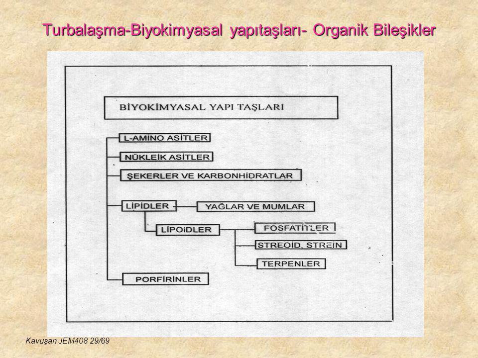 Turbalaşma-Biyokimyasal yapıtaşları- Organik Bileşikler